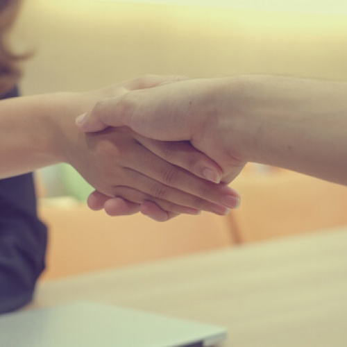 Businesswoman shaking hands with a sole director