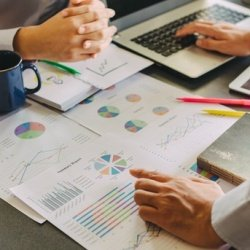 What is the difference between an accountant and a tax adviser?