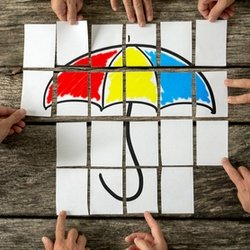 Should I go Umbrella or Limited Company?