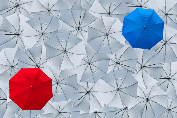 Umbrella vs Limited Company – What You Need To Know