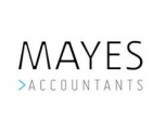 Mayes Business Partnership